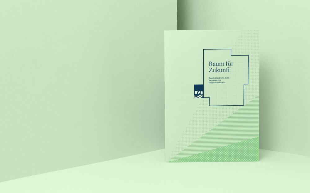 BVE Annual report series